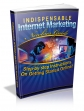 Indispensable Internet Marketing Newbies Guide