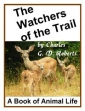 The Watchers Of The Trail