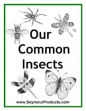 Our Common Insects