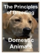 The Principles Of Breeding Domestic Animals