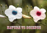 Nature V/S Science